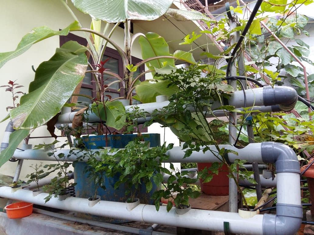 Vertical aquaponics by Abu Haji
