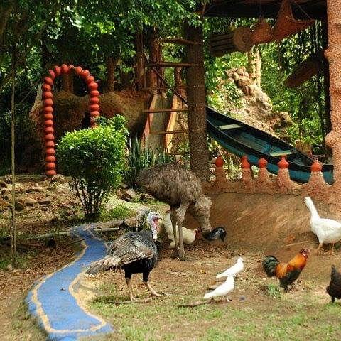 Varkey's ecosystem park